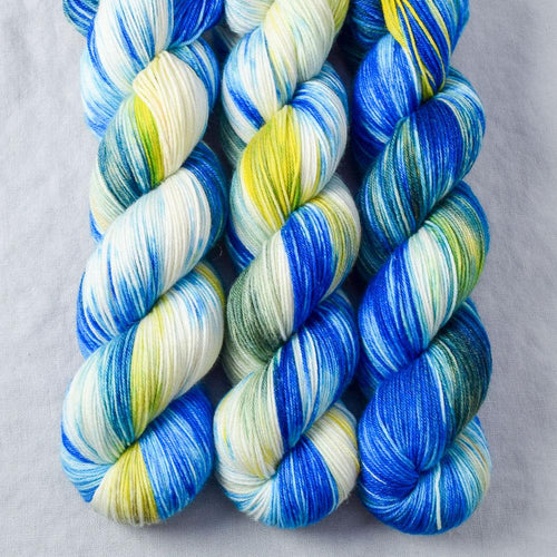 Bluebonnets - Miss Babs Tarte yarn