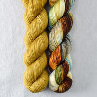 Box Turtle, Lost Treasure - Miss Babs 2-Ply Duo