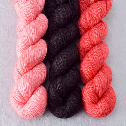Cacao, Coral, Dahlia - Miss Babs Yummy Trio