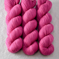 Cochinilla - Miss Babs Yummy 3-Ply yarn