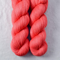 Coral - Miss Babs Yearning yarn