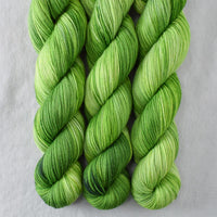 Dragons Flight - Miss Babs Putnam yarn