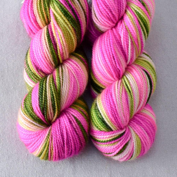 Drunken Watermelon - Miss Babs 2-Ply Toes yarn