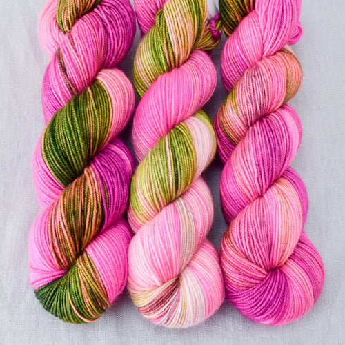 Drunken Watermelon - Miss Babs Yummy 3-Ply yarn
