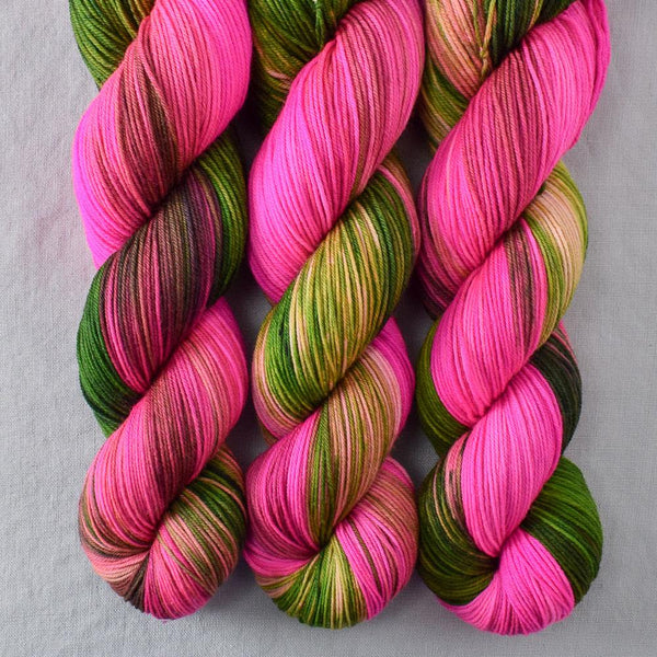 Drunken Watermelon - Miss Babs Putnam yarn