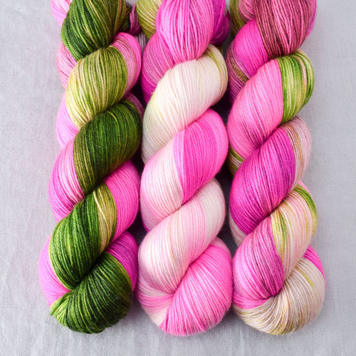 Drunken Watermelon - Miss Babs Tarte yarn