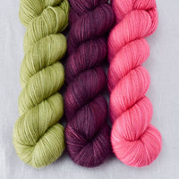 Fiddlehead, Plum, Sweet Pea - Miss Babs Yummy Trio