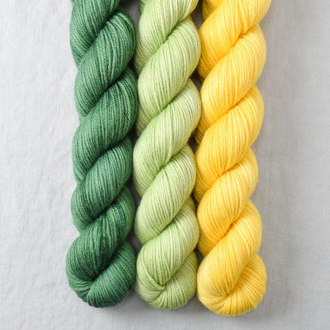 Fraser, Spring Green, Sunny - Miss Babs Yowza Mini Trio