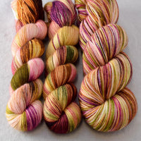 Garden Party Partial Skeins - Miss Babs Katahdin yarn