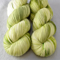 Garden Vines - Miss Babs Yowza yarn