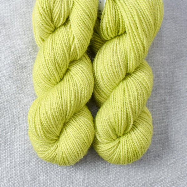 Ginkgo - 2-Ply Toes