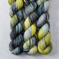 Goblins and Ghouls - Miss Babs Estrellita yarn