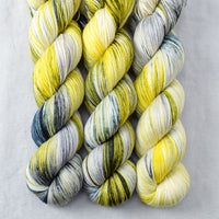 Goblins and Ghouls - Miss Babs Tarte yarn