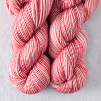 Goodness Sake - Miss Babs 2-Ply Toes yarn