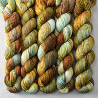 Lost Treasure Partial Skeins - Miss Babs Dulcinea yarn