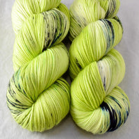Memories of Germany - Miss Babs Yowza yarn