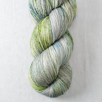 Mother Earth - Miss Babs Katahdin yarn
