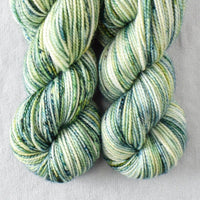Pacifica - Miss Babs 2-Ply Toes yarn