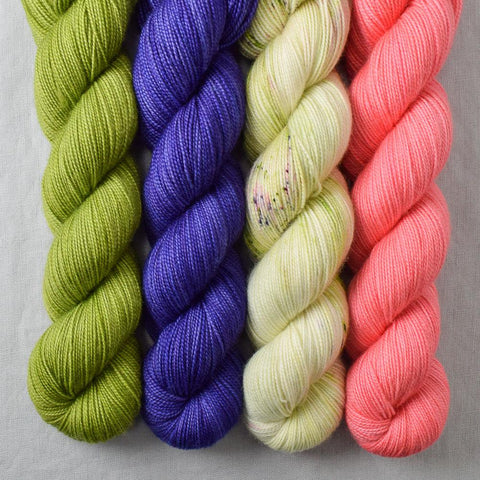 Special Edition 258 - Miss Babs Yummy 2-Ply Quartet