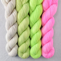 Special Edition 354 - Miss Babs Yummy 2-Ply Quartet