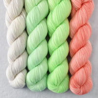 Special Edition 356 - Miss Babs Yummy 2-Ply Quartet