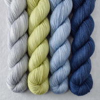 Special Edition 445 - Miss Babs Yummy 2-Ply Quartet