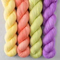Special Edition 478 - Miss Babs Yummy 2-Ply Quartet