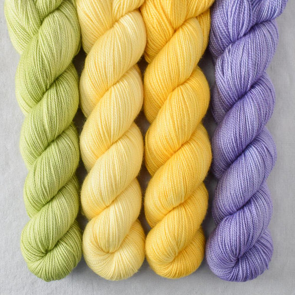 Special Edition 480 - Miss Babs Yummy 2-Ply Quartet