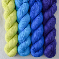 Special Edition 495 - Miss Babs Yummy 2-Ply Quartet