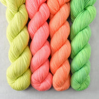 Special Edition 567 - Miss Babs Yummy 2-Ply Quartet