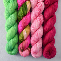 Special Edition 576 - Miss Babs Yummy 2-Ply Quartet