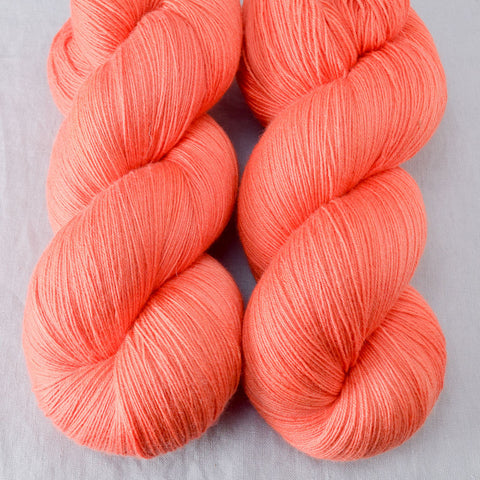 Spicy Papaya - Miss Babs Katahdin yarn