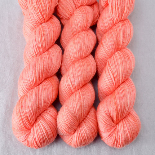 Spicy Papaya - Miss Babs Tarte yarn
