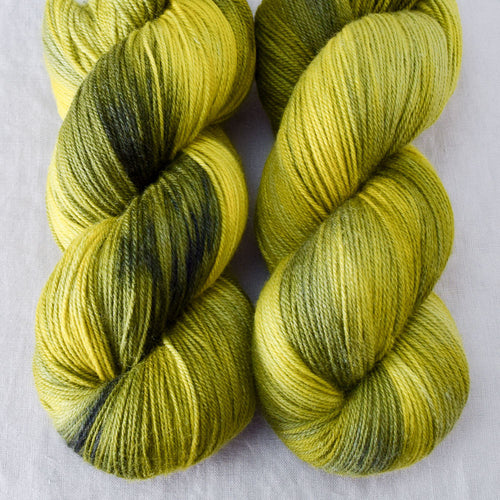 Swamp Thang - Miss Babs Killington yarn
