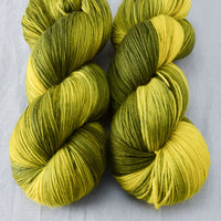 Swamp Thang - Miss Babs Yowza yarn