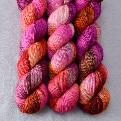 Verrassing - Miss Babs Katahdin 437 yarn