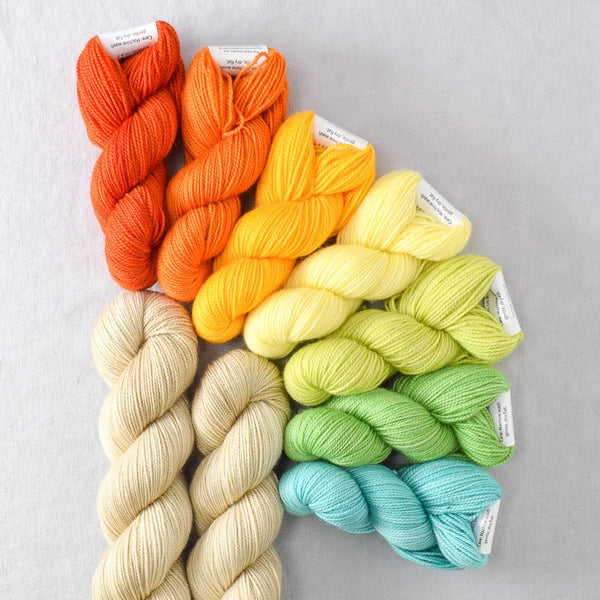 Vitamin C - Miss Babs Garden Variety Set yarn