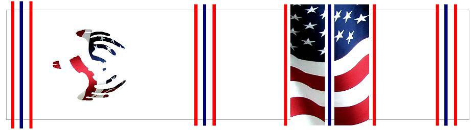 Missouri Archery Arrow Wraps Flags American Flag European Mount Deer Skull 86