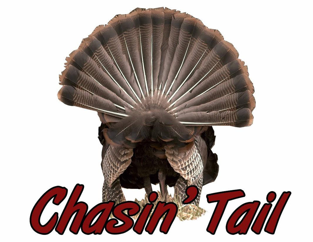Turkey Fan Chasin' Tail Decal
