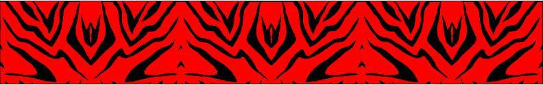 Arrow Wraps Zebra Flo Red 12+2 Free