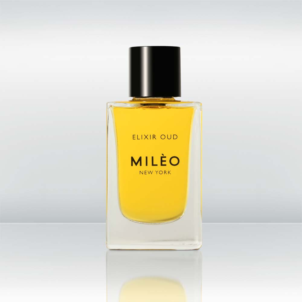 Product photo, Monte D'Oro Elixir Oud Nuit by vendor Milèo