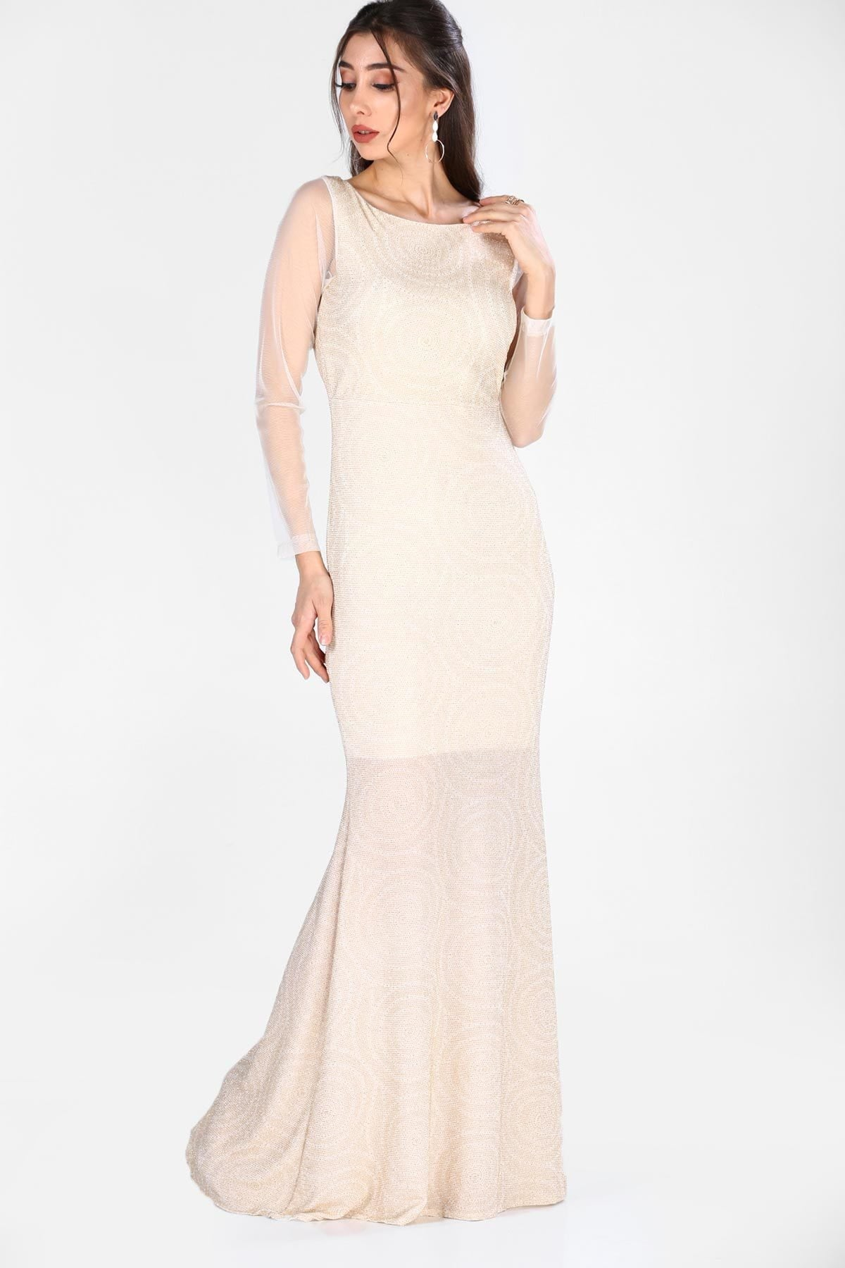 Women's Tulle Embroidered Sleeves Silvery Ecru Evening Dress