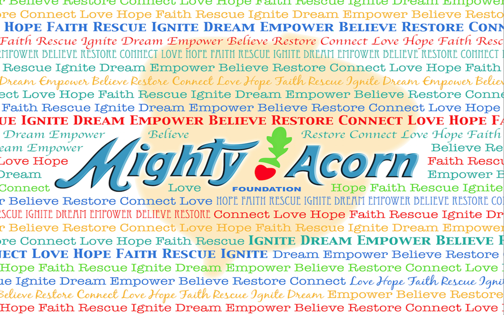 Mighty Acorn Foundation Blanket