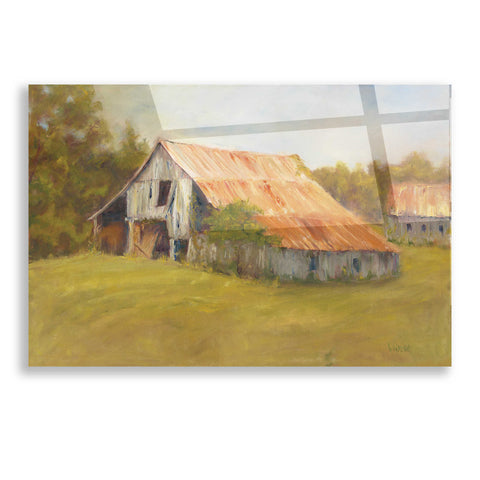 Image of Epic Art 'Tin Roof' by Marilyn Wendling, Acrylic Glass Wall Art