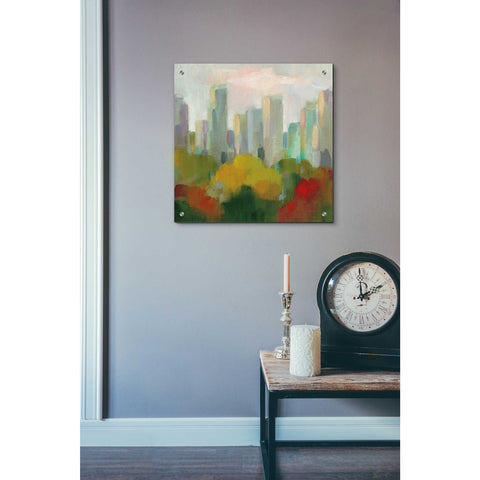 Image of Epic Art 'NYC Central Park I' by Silvia Vassileva, Acrylic Glass Wall Art,24x24