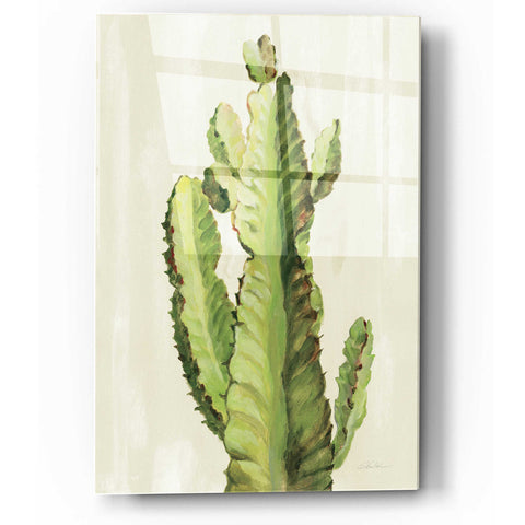 Epic Art 'Front Yard Cactus II' by Silvia Vassileva, Acrylic Glass Wall Art