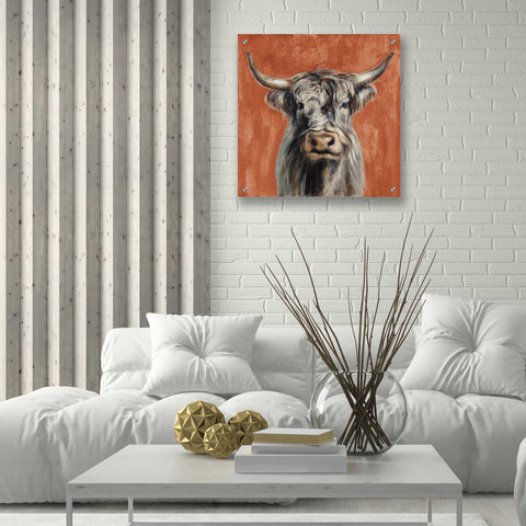 Epic Art 'Highland Cow on Terracotta' by Silvia Vassileva, Acrylic Glass Wall Art,24x24