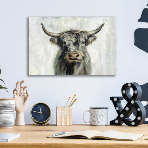 Epic Art 'Highland Cow Horizontal' by Silvia Vassileva, Acrylic Glass Wall Art,16x12