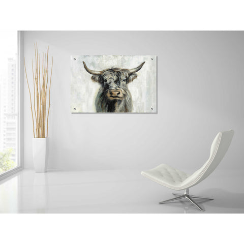 Epic Art 'Highland Cow Horizontal' by Silvia Vassileva, Acrylic Glass Wall Art,36x24
