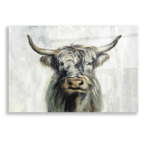 Epic Art 'Highland Cow Horizontal' by Silvia Vassileva, Acrylic Glass Wall Art